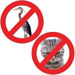 Anti Kat & Reiger