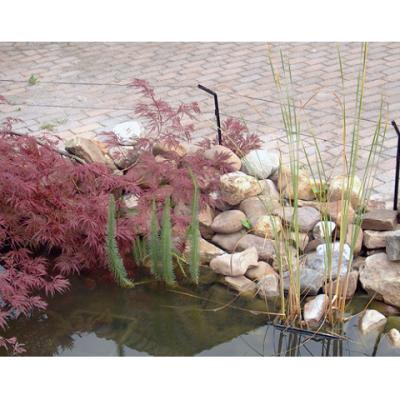 Pond defence 2