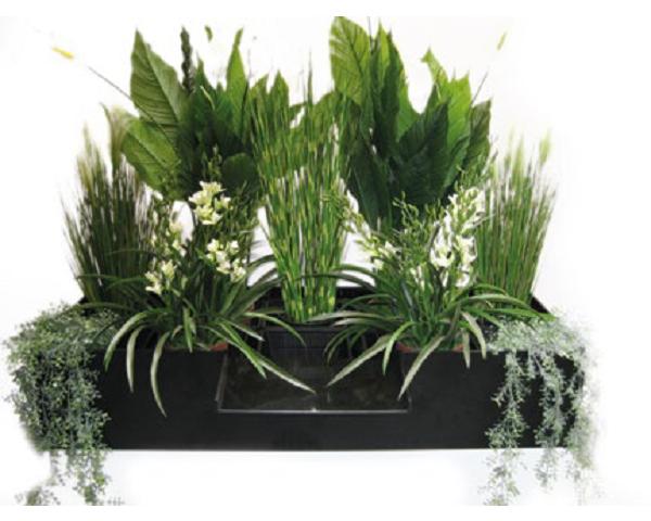Plants Filter medium