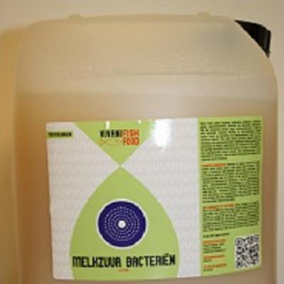 Vivani Melkzuurbacterie