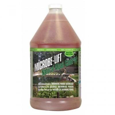 Natural Algae Control