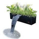 Sansai Plant Bio