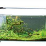 boyu aquarium 30 liter mek 550f